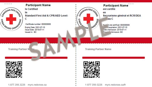 Standard First Aid & CPR/AED Level C certiifcate
