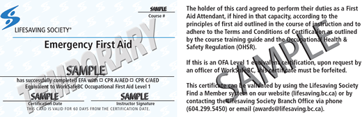 Lifesaving Society Emergency First Aid (temporary) (OFA Level 1 Equivalent) ticket
