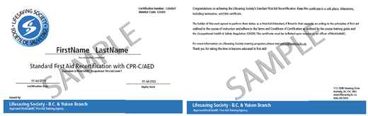 Lifesaving Society Standard First Aid CPR C /  AED Recertification (OFA Level 1 Equivalent)