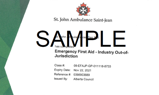 St. John Ambulance Alberta Emergency First Aid for Industry out of Jurisdiction (OFA Level 1 Equivalent)