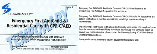 Lifesaving Society - Emergency First Aid Child & Residential Care with CPR C/AED